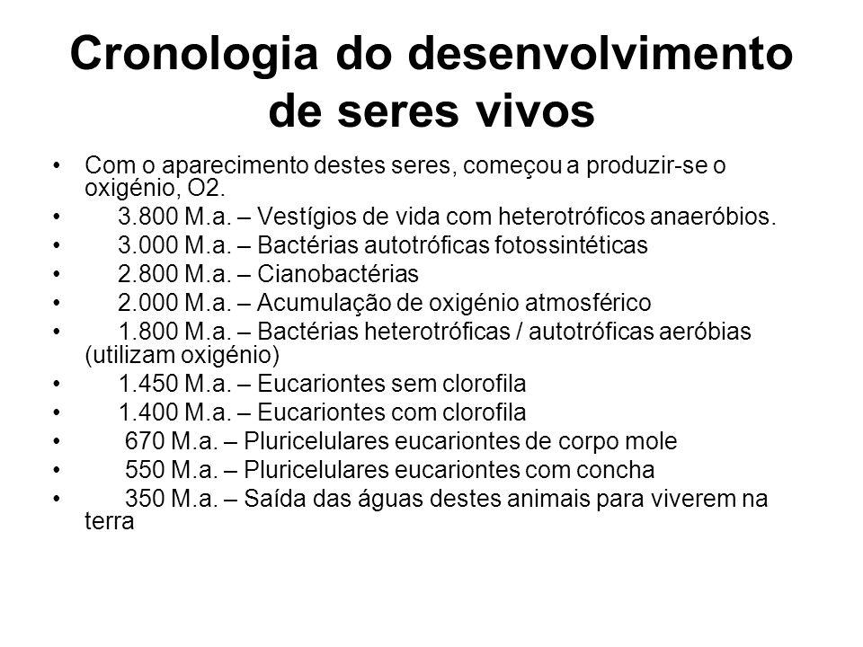 Cronologia do desenvolvimento de seres vivos
