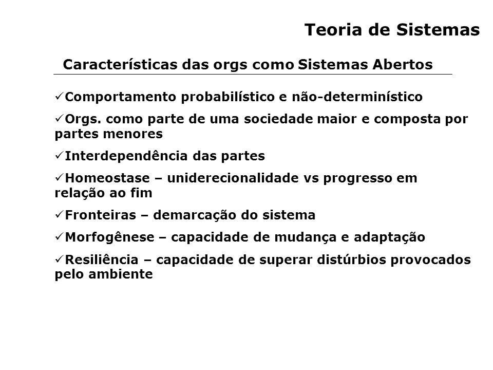 Teoria de Sistemas Características das orgs como Sistemas Abertos