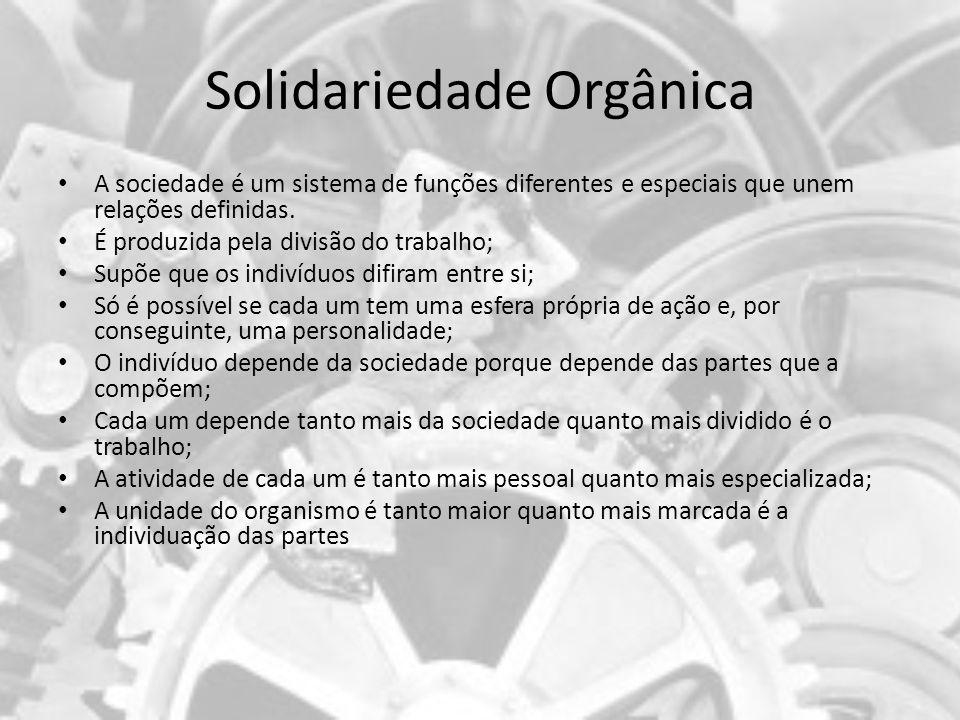 Solidariedade Orgânica