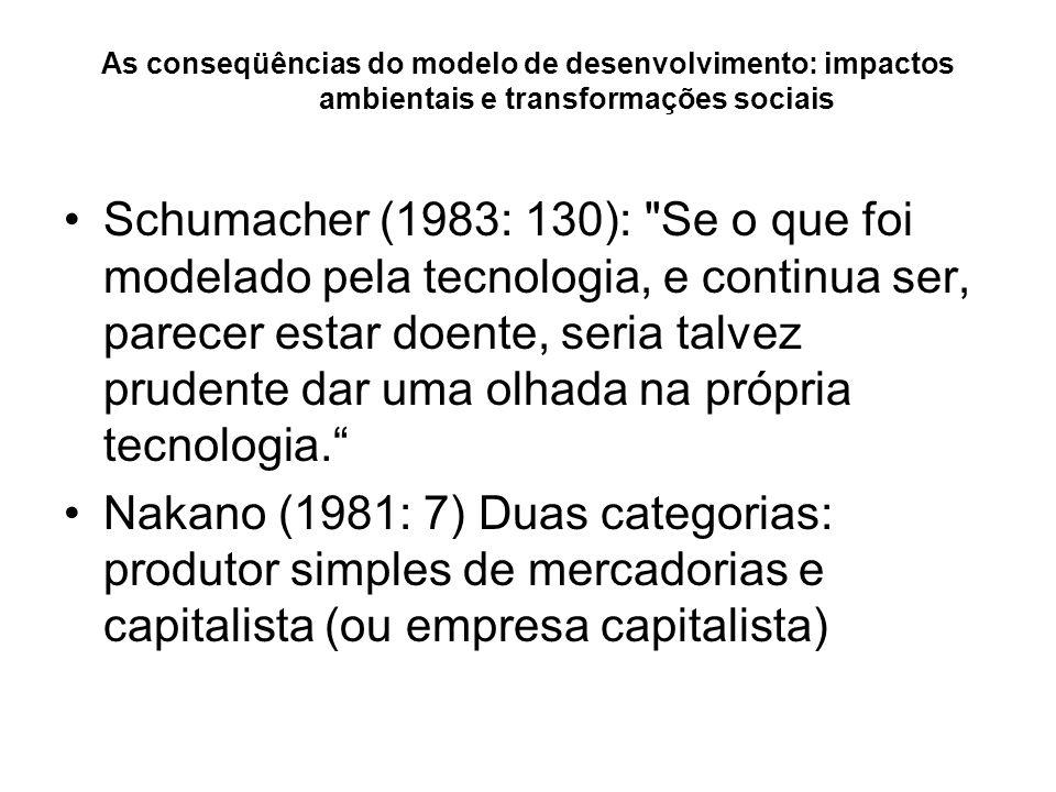 As conseqüências do modelo de desenvolvimento: impactos ambientais e transformações sociais