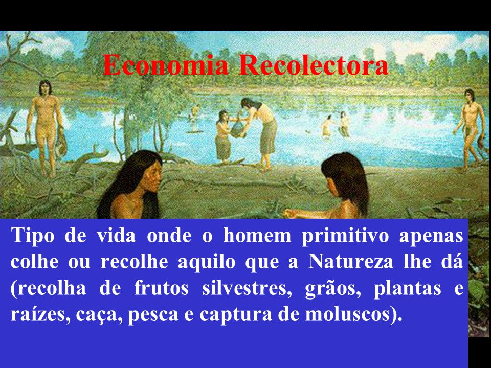 Economia Recolectora