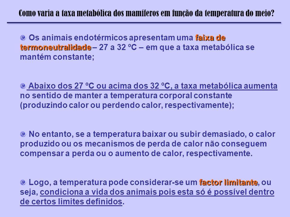 Termorregulação Como varia a taxa metabólica dos mamíferos em função da temperatura do meio