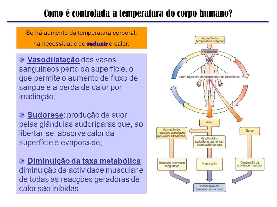 Como é controlada a temperatura do corpo humano