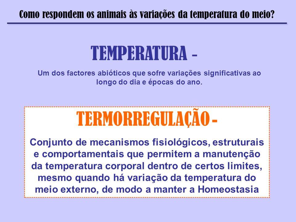 TEMPERATURA - TERMORREGULAÇÃO -