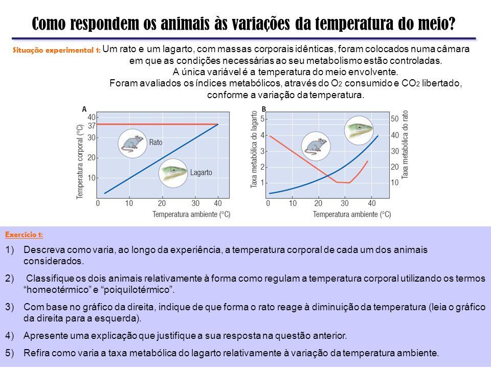 A única variável é a temperatura do meio envolvente.