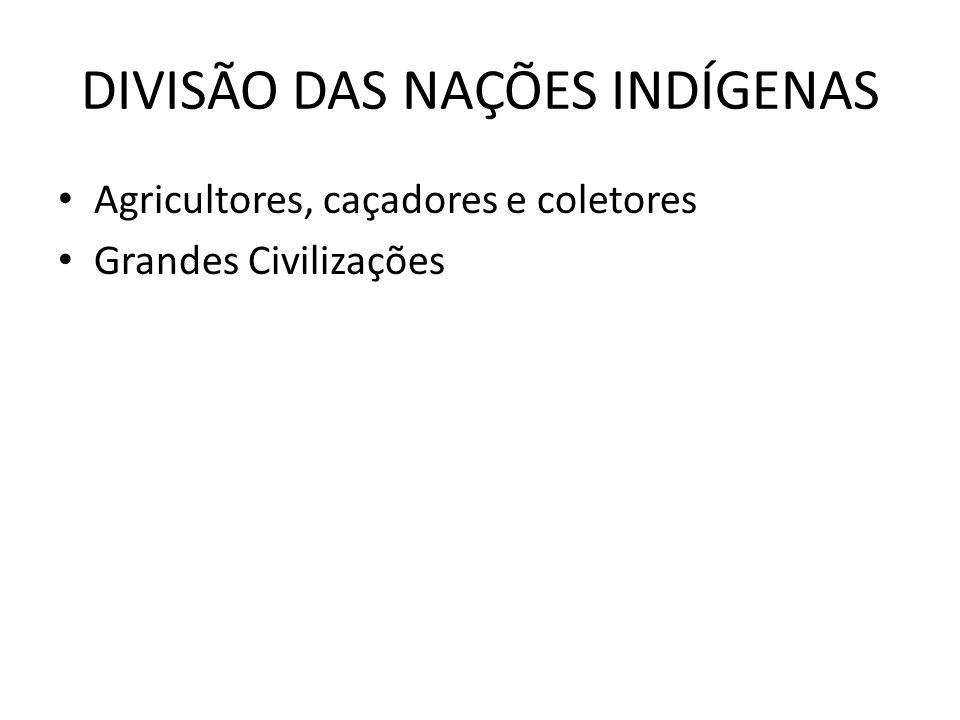 DIVISÃO DAS NAÇÕES INDÍGENAS