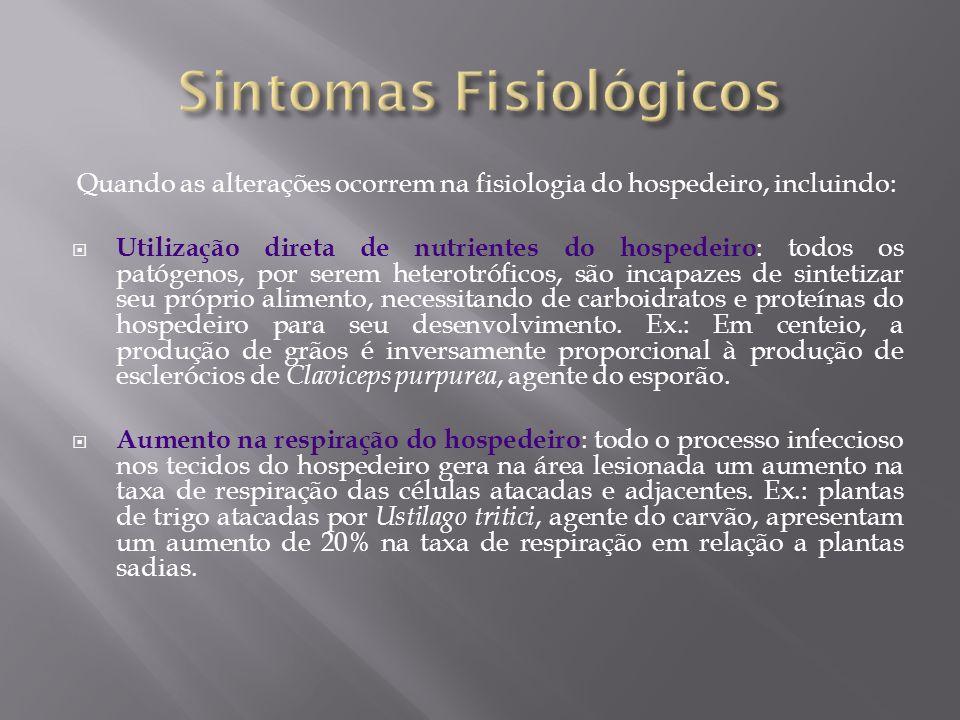 Sintomas Fisiológicos