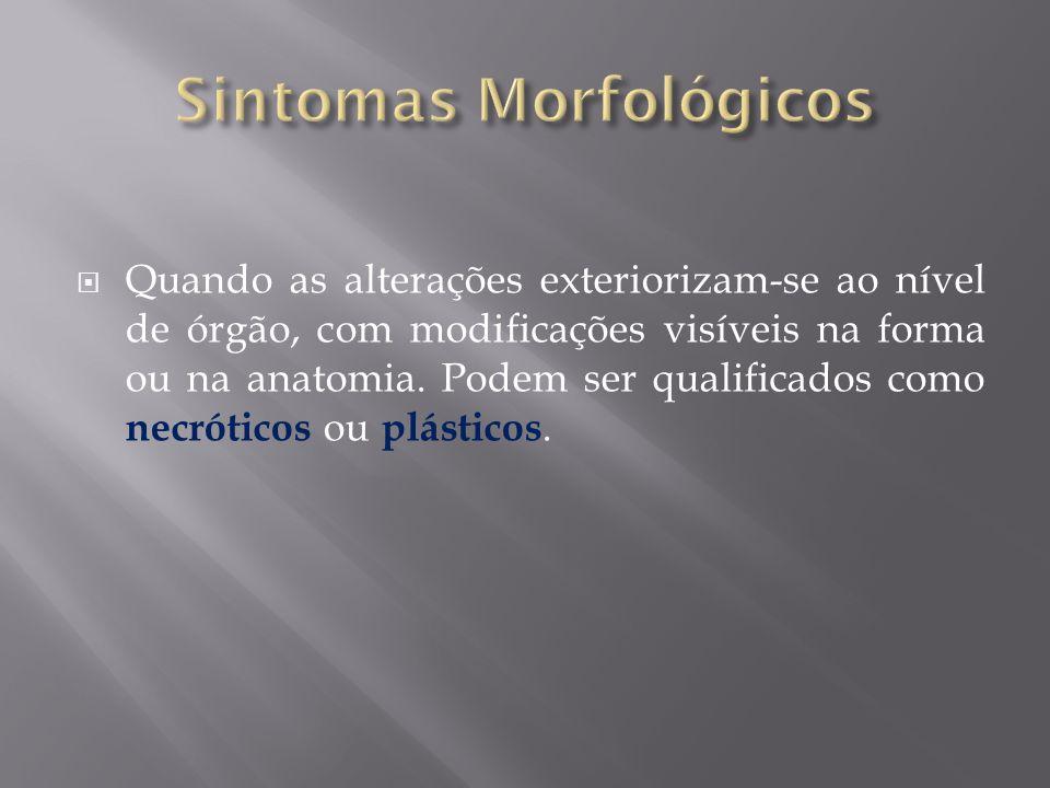 Sintomas Morfológicos