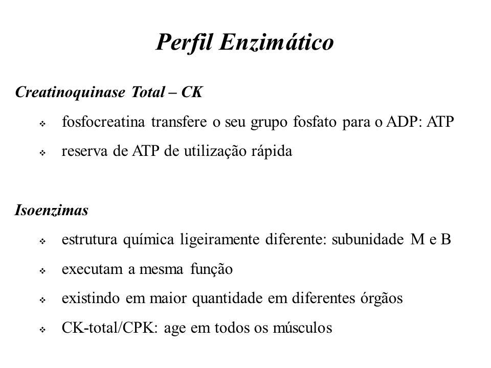Perfil Enzimático Creatinoquinase Total – CK