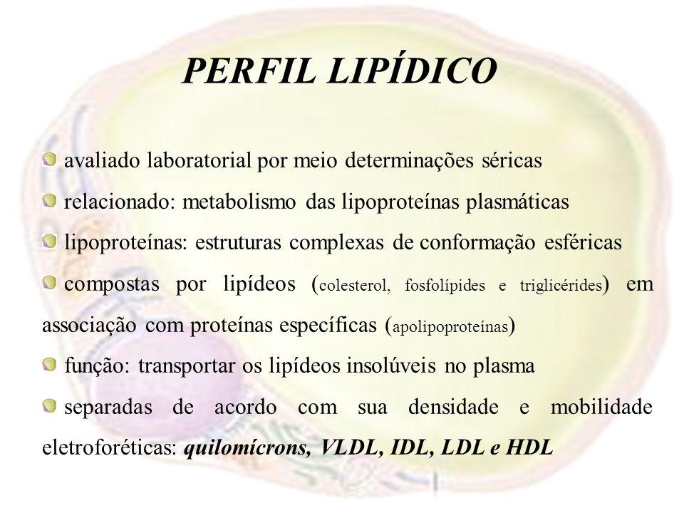 PERFIL LIPÍDICO avaliado laboratorial por meio determinações séricas