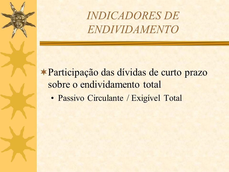 INDICADORES DE ENDIVIDAMENTO