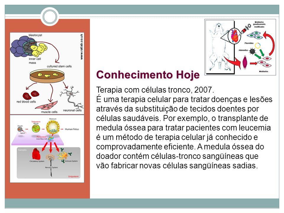 Conhecimento Hoje Terapia com células tronco, 2007