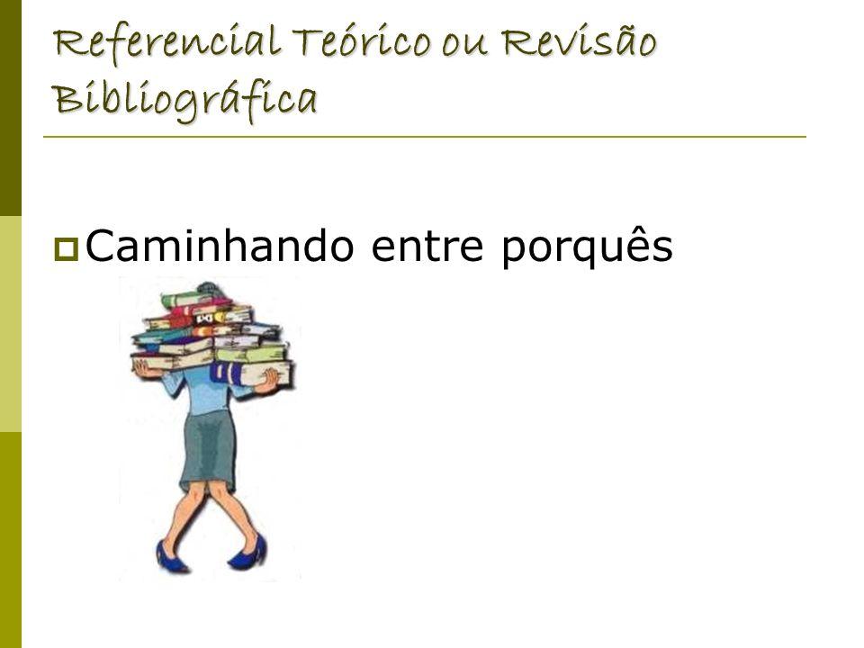 Referencial Teórico ou Revisão Bibliográfica
