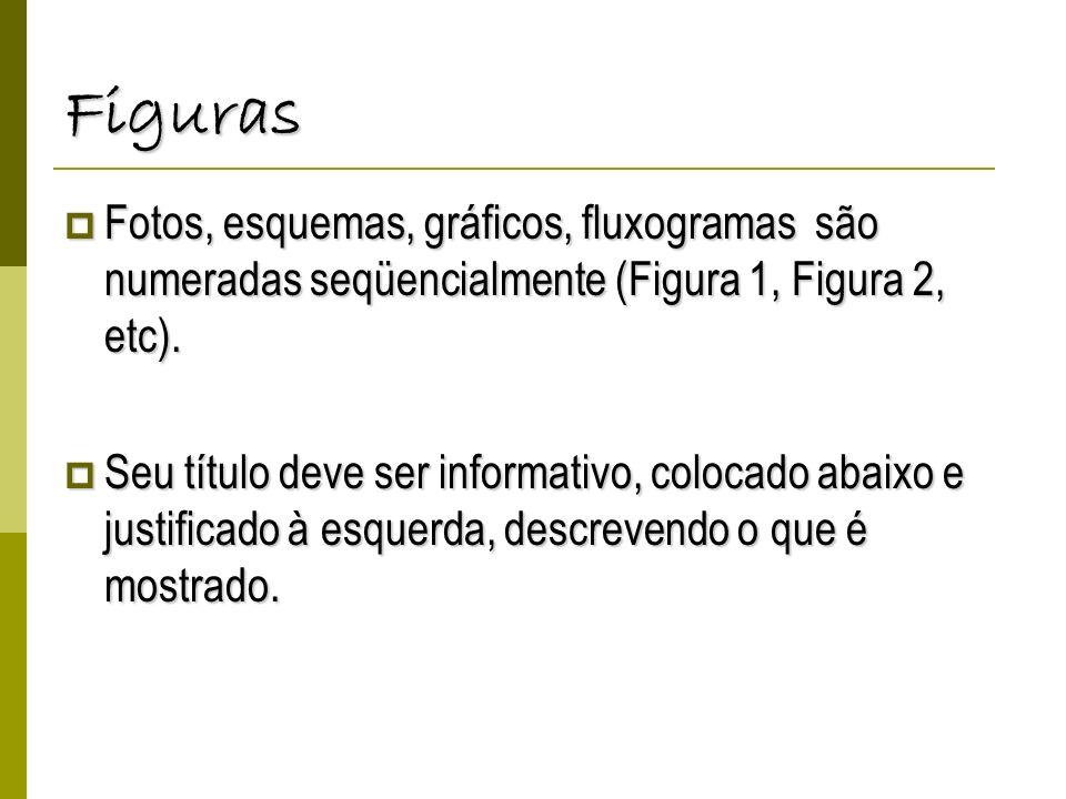 FigurasFotos, esquemas, gráficos, fluxogramas são numeradas seqüencialmente (Figura 1, Figura 2, etc).