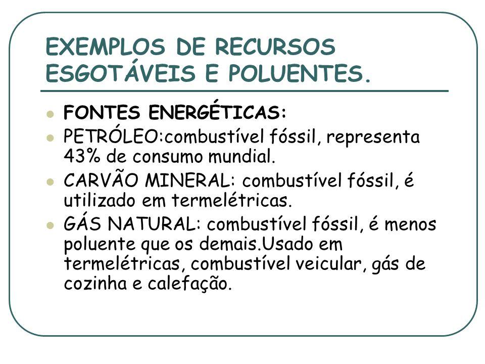 EXEMPLOS DE RECURSOS ESGOTÁVEIS E POLUENTES.
