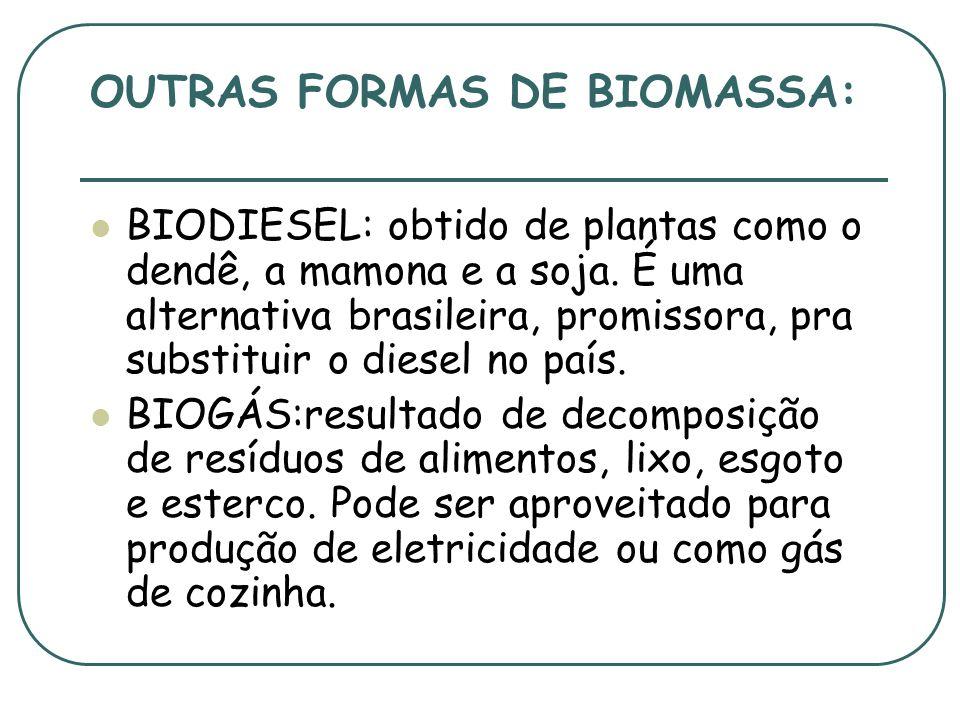 OUTRAS FORMAS DE BIOMASSA: