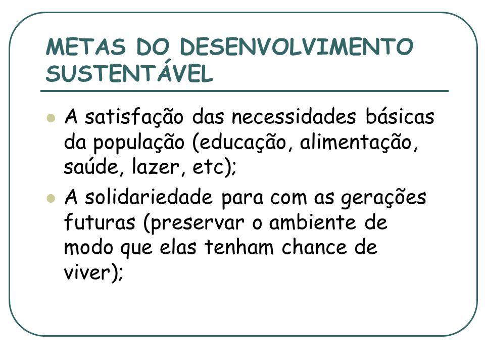 METAS DO DESENVOLVIMENTO SUSTENTÁVEL