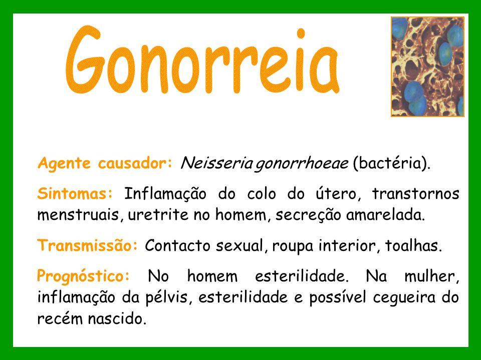 Gonorreia Agente causador: Neisseria gonorrhoeae (bactéria).