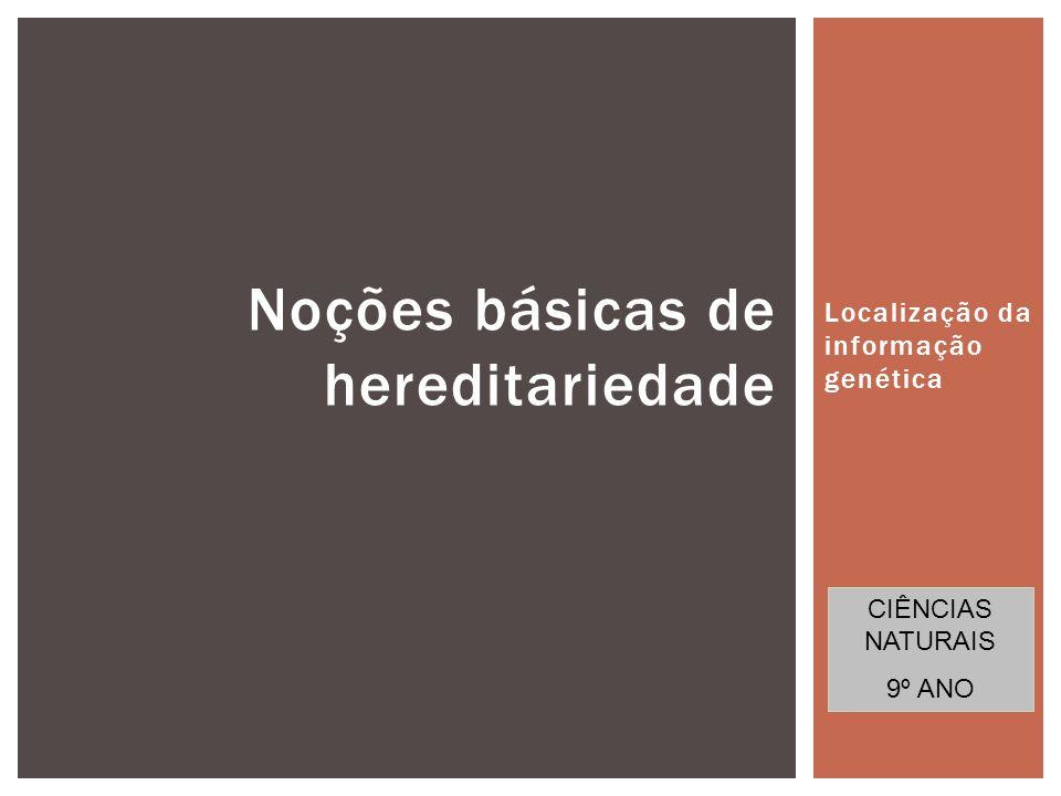 Noções básicas de hereditariedade