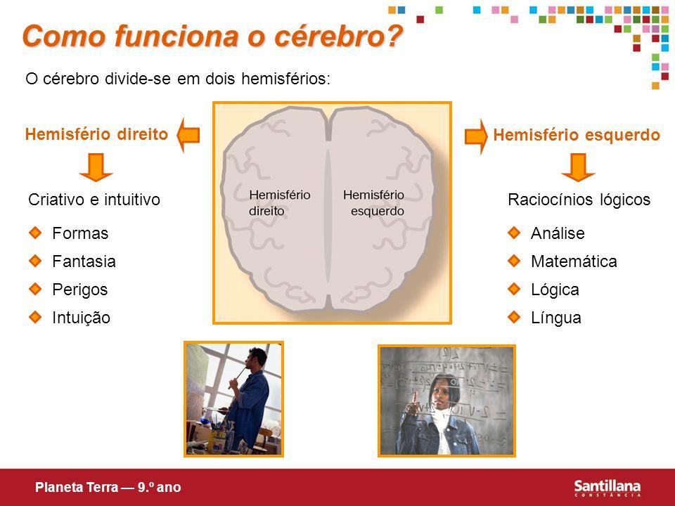 Como funciona o cérebro