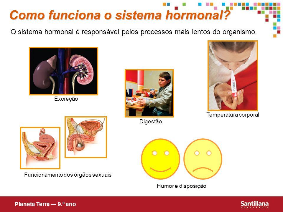 Funcionamento dos órgãos sexuais