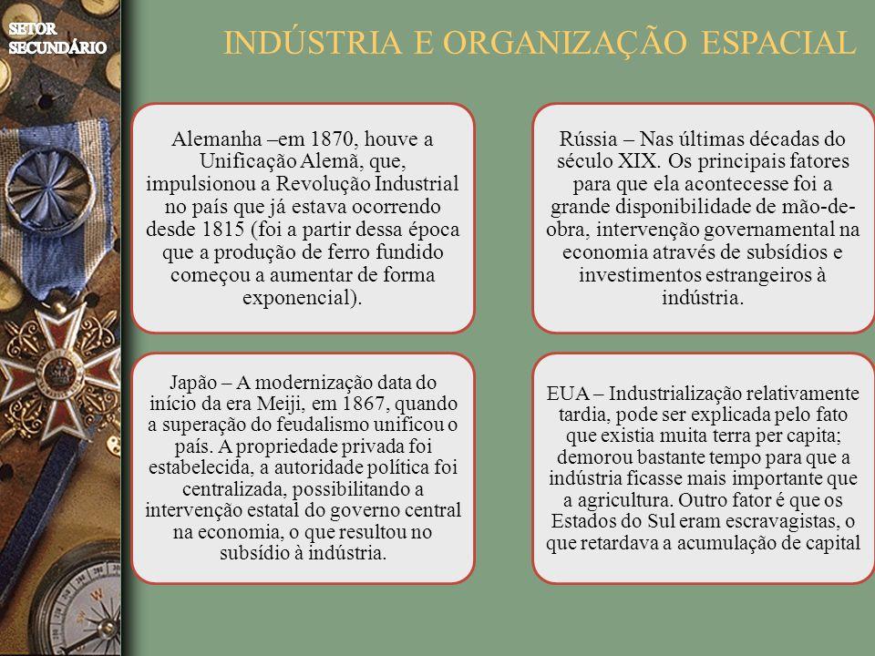 INDÚSTRIA E ORGANIZAÇÃO ESPACIAL