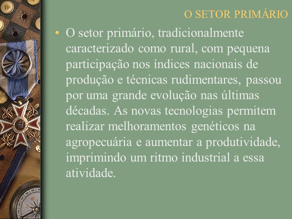 O SETOR PRIMÁRIO