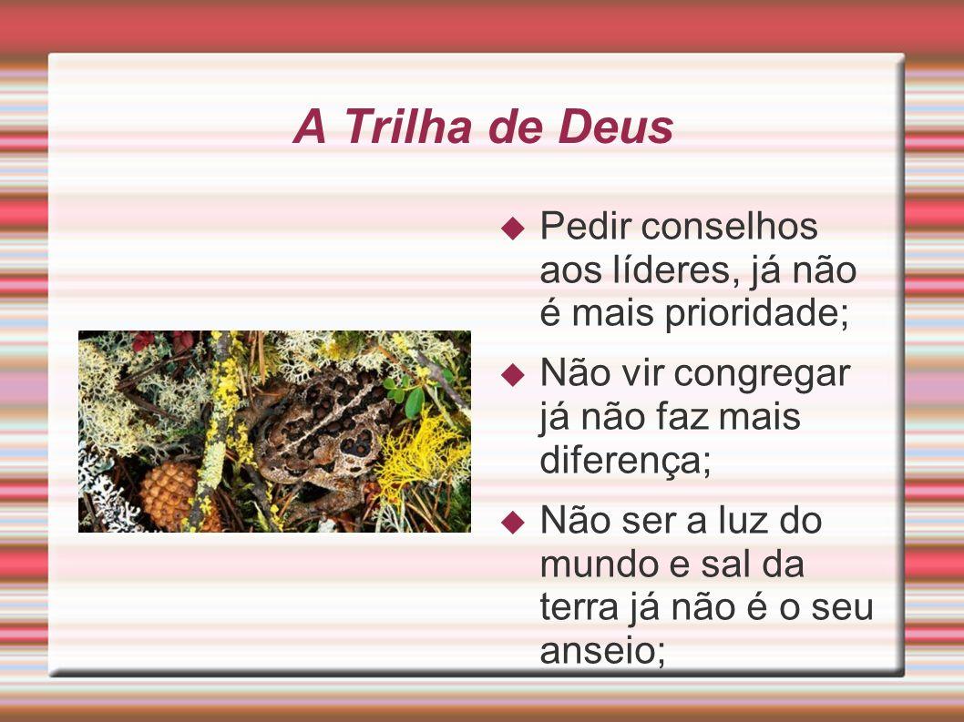 A Trilha de Deus Pedir conselhos aos líderes, já não é mais prioridade; Não vir congregar já não faz mais diferença;