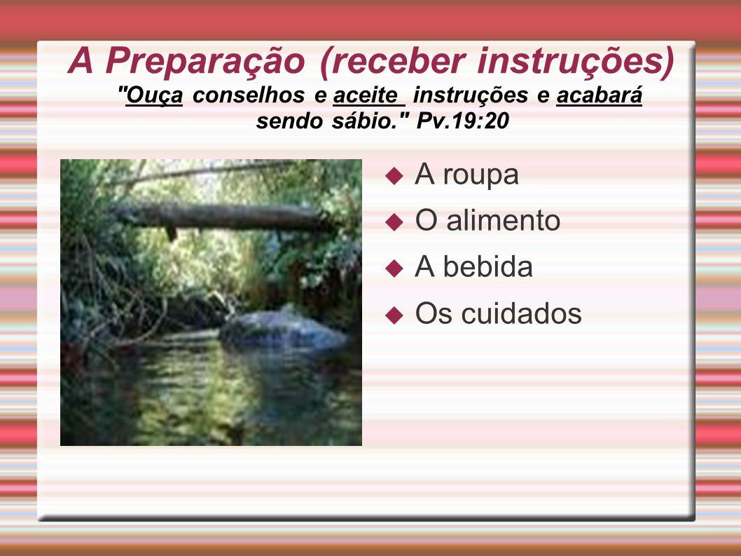 A Preparação (receber instruções) Ouça conselhos e aceite instruções e acabará sendo sábio. Pv.19:20