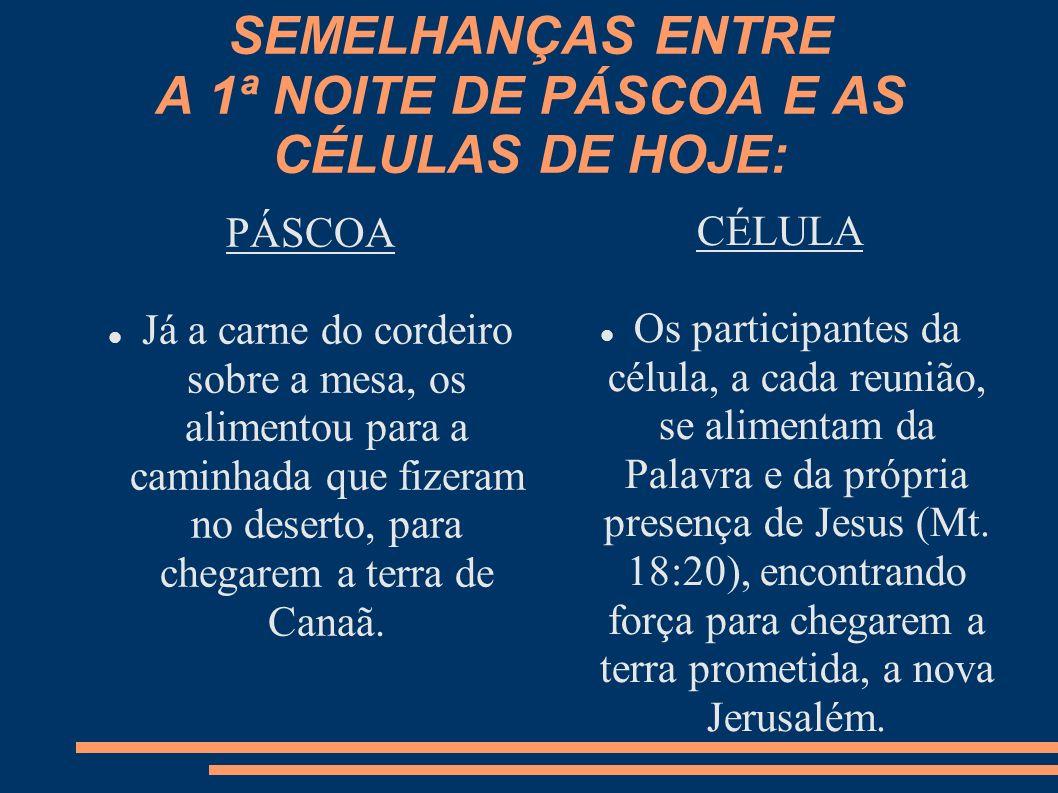 SEMELHANÇAS ENTRE A 1ª NOITE DE PÁSCOA E AS CÉLULAS DE HOJE: