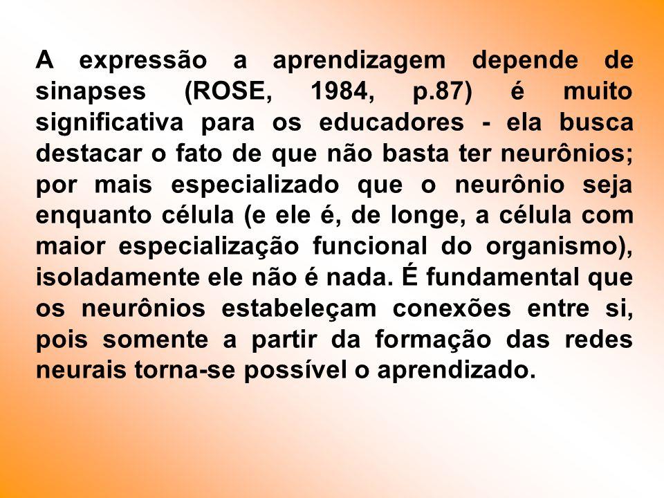 A expressão a aprendizagem depende de sinapses (ROSE, 1984, p