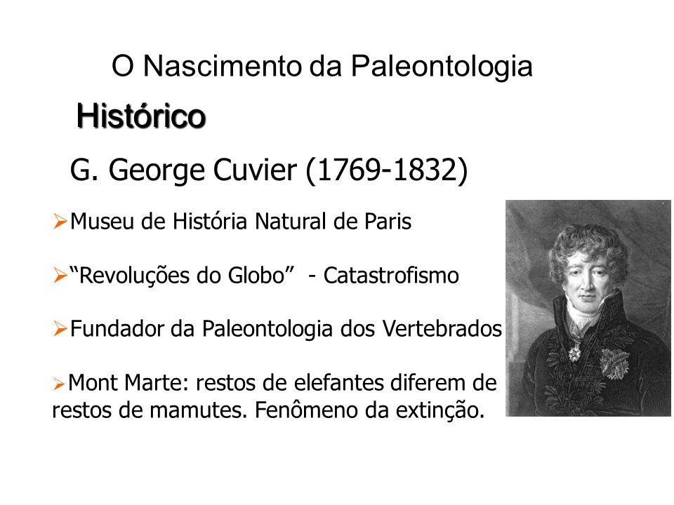 O Nascimento da Paleontologia