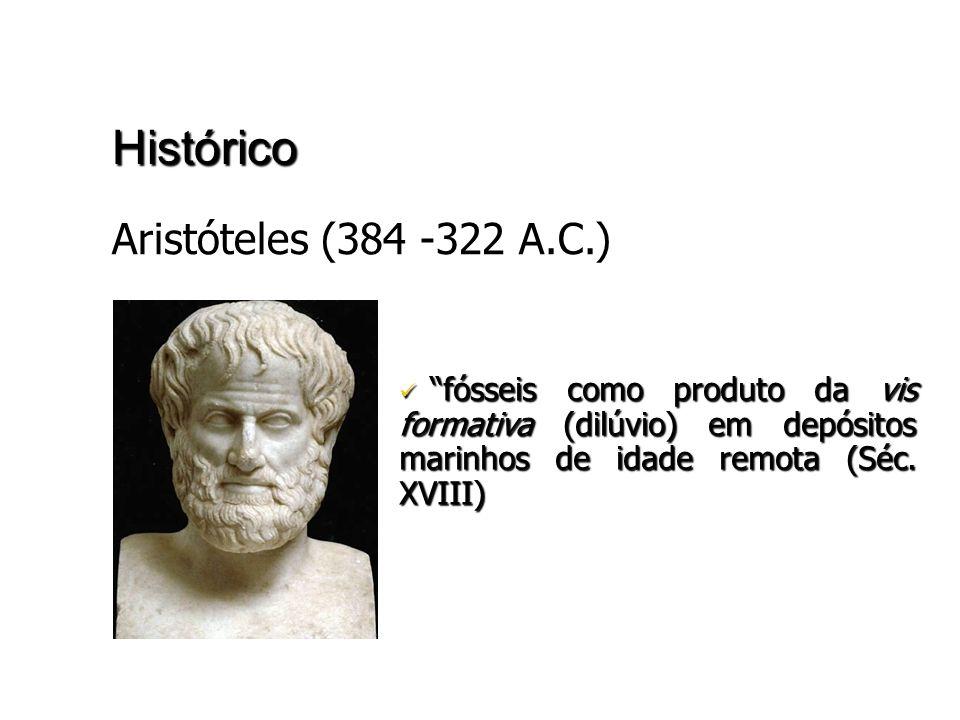 Histórico Aristóteles (384 -322 A.C.)