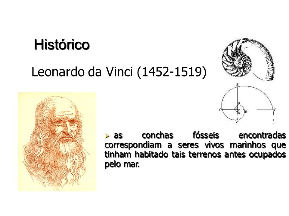 Histórico Leonardo da Vinci (1452-1519)