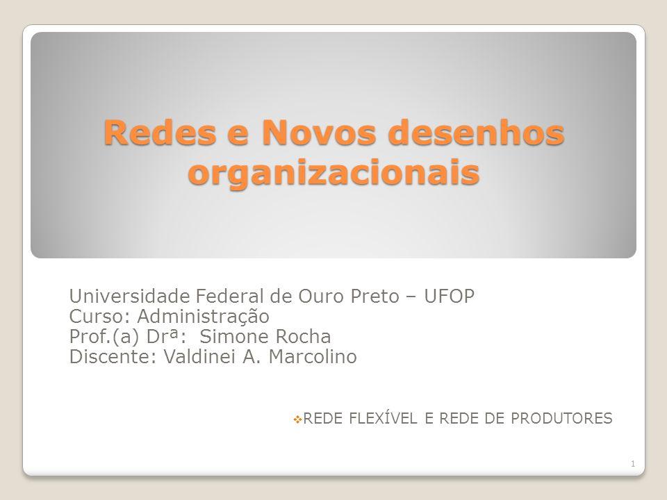 Redes e Novos desenhos organizacionais