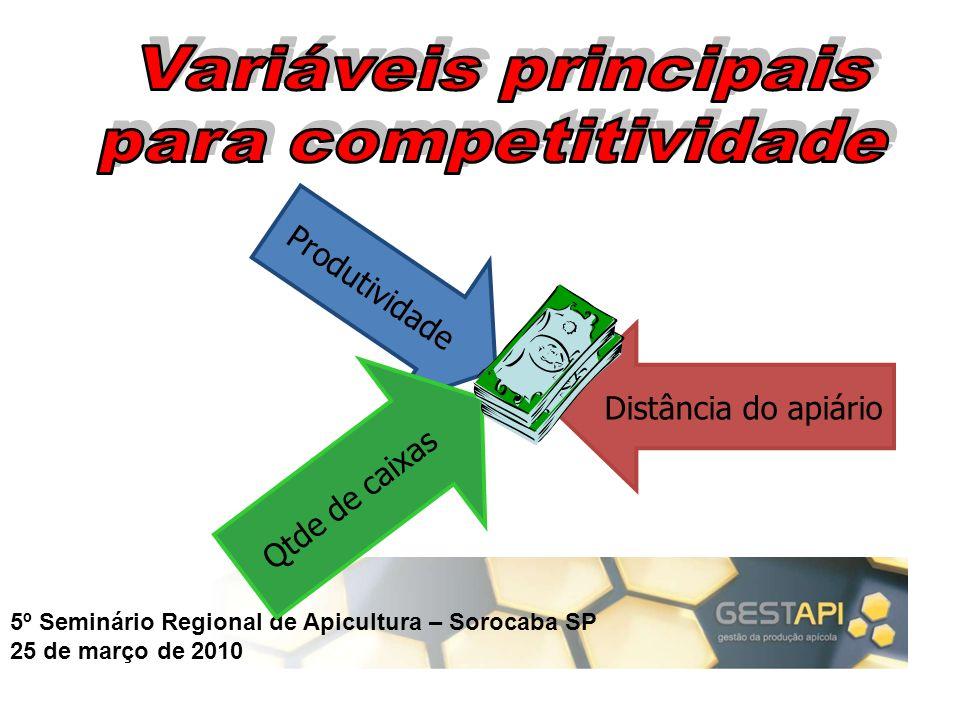Variáveis principais para competitividade Produtividade