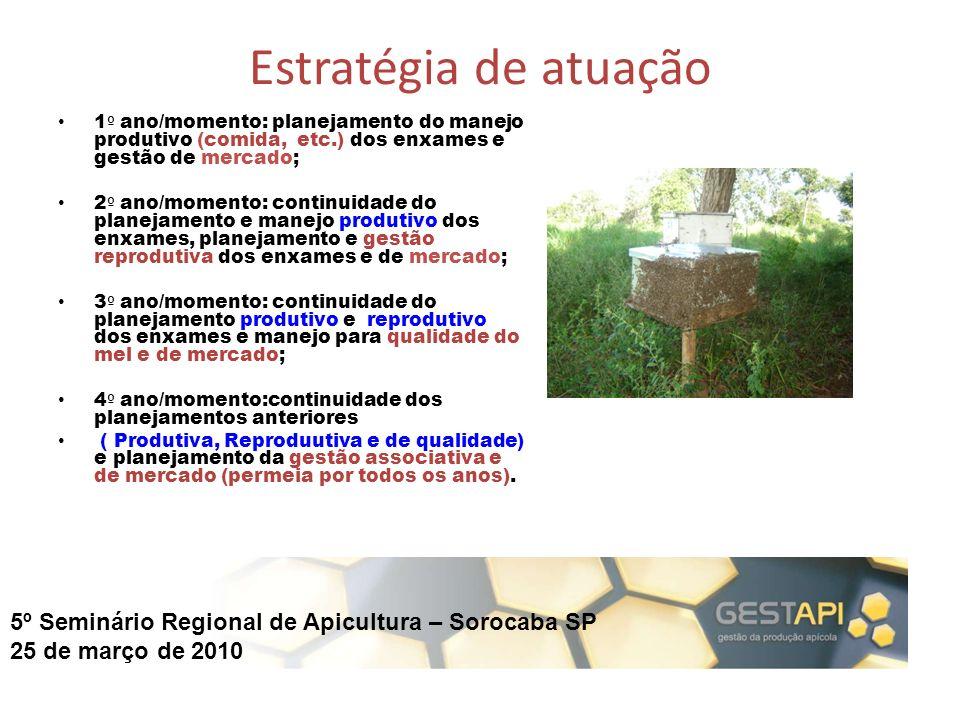 Estratégia de atuação 1º ano/momento: planejamento do manejo produtivo (comida, etc.) dos enxames e gestão de mercado;