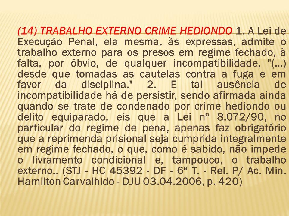(14) TRABALHO EXTERNO CRIME HEDIONDO 1