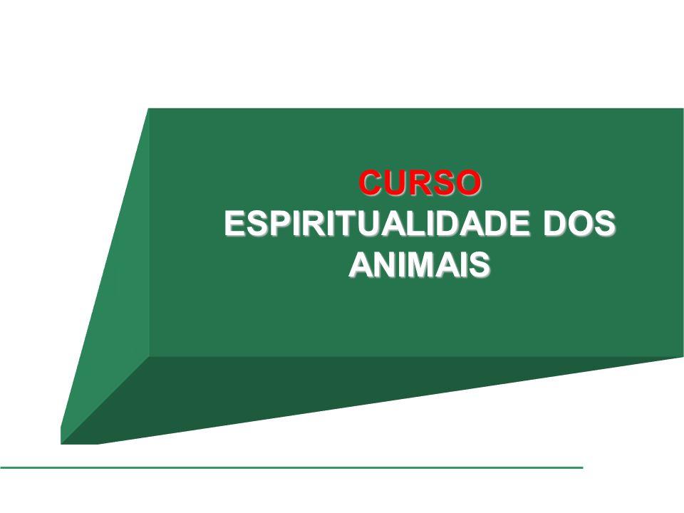 ESPIRITUALIDADE DOS ANIMAIS