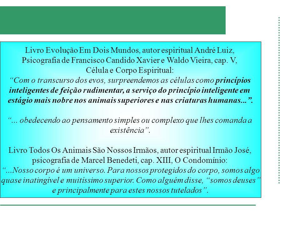 estágio mais nobre nos animais superiores e nas criaturas humanas... .