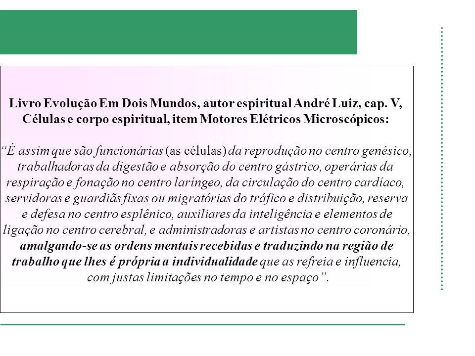 Livro Evolução Em Dois Mundos, autor espiritual André Luiz, cap. V,