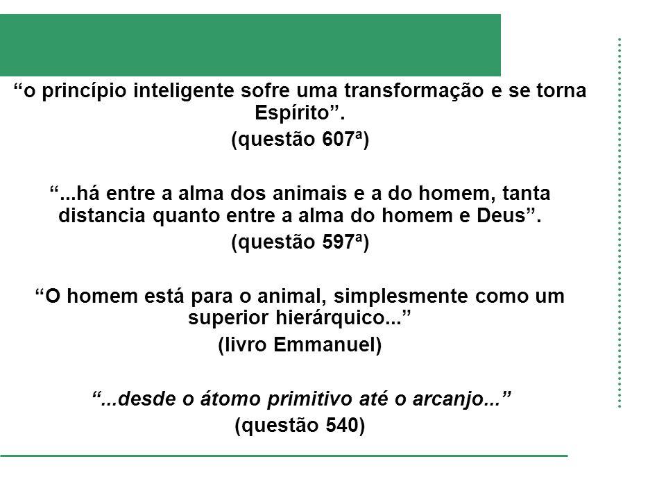 o princípio inteligente sofre uma transformação e se torna Espírito .