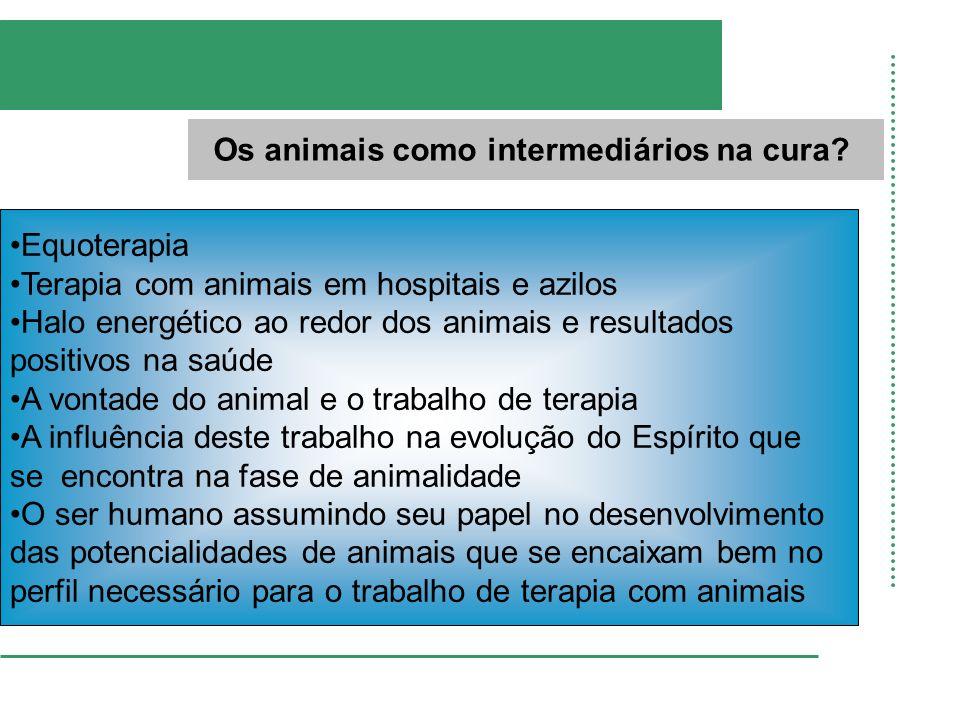 Os animais como intermediários na cura