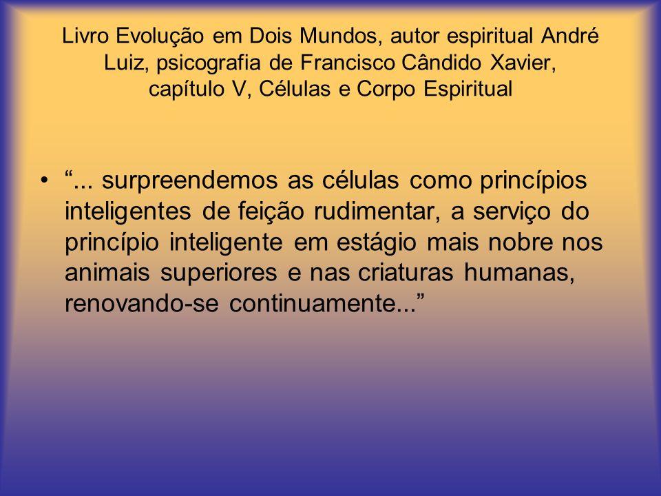 Livro Evolução em Dois Mundos, autor espiritual André Luiz, psicografia de Francisco Cândido Xavier, capítulo V, Células e Corpo Espiritual