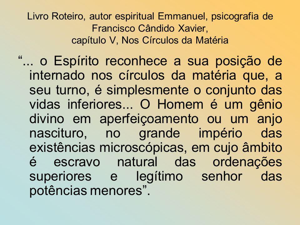 Livro Roteiro, autor espiritual Emmanuel, psicografia de Francisco Cândido Xavier, capítulo V, Nos Círculos da Matéria