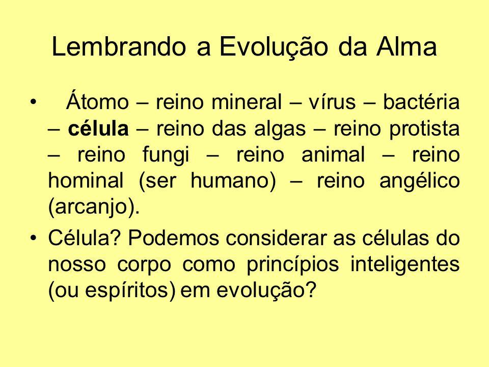 Lembrando a Evolução da Alma
