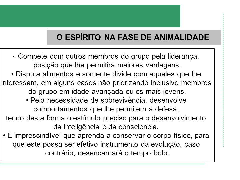 O ESPÍRITO NA FASE DE ANIMALIDADE