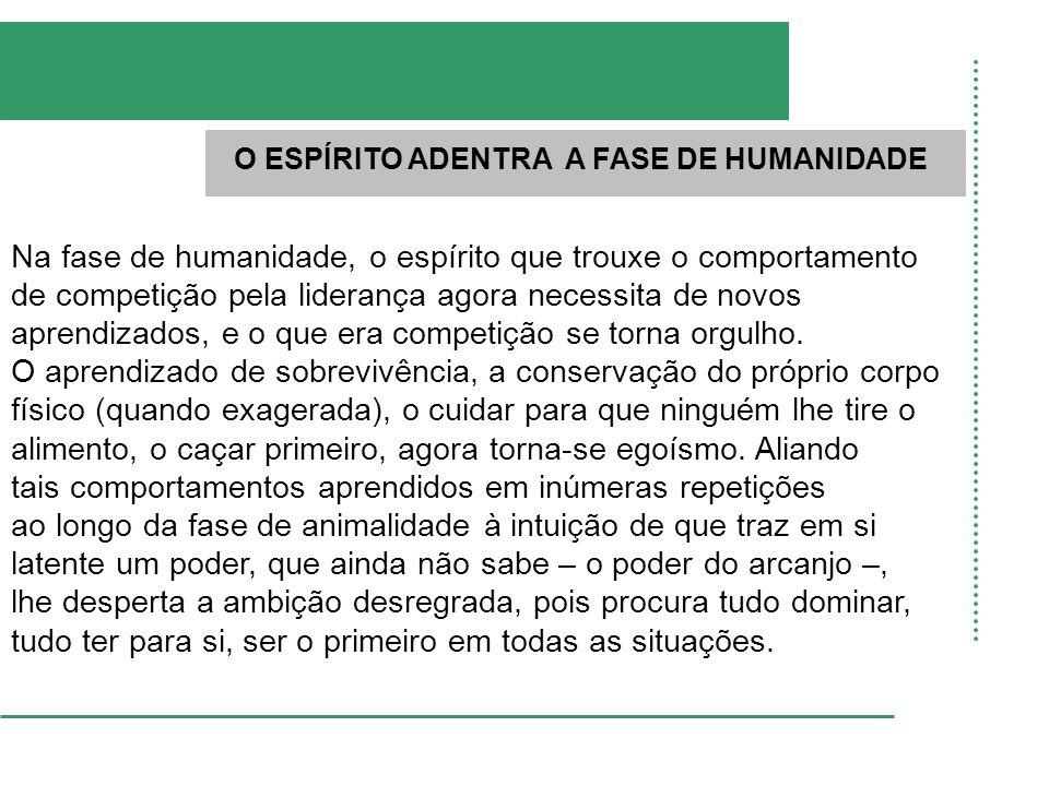 O ESPÍRITO ADENTRA A FASE DE HUMANIDADE