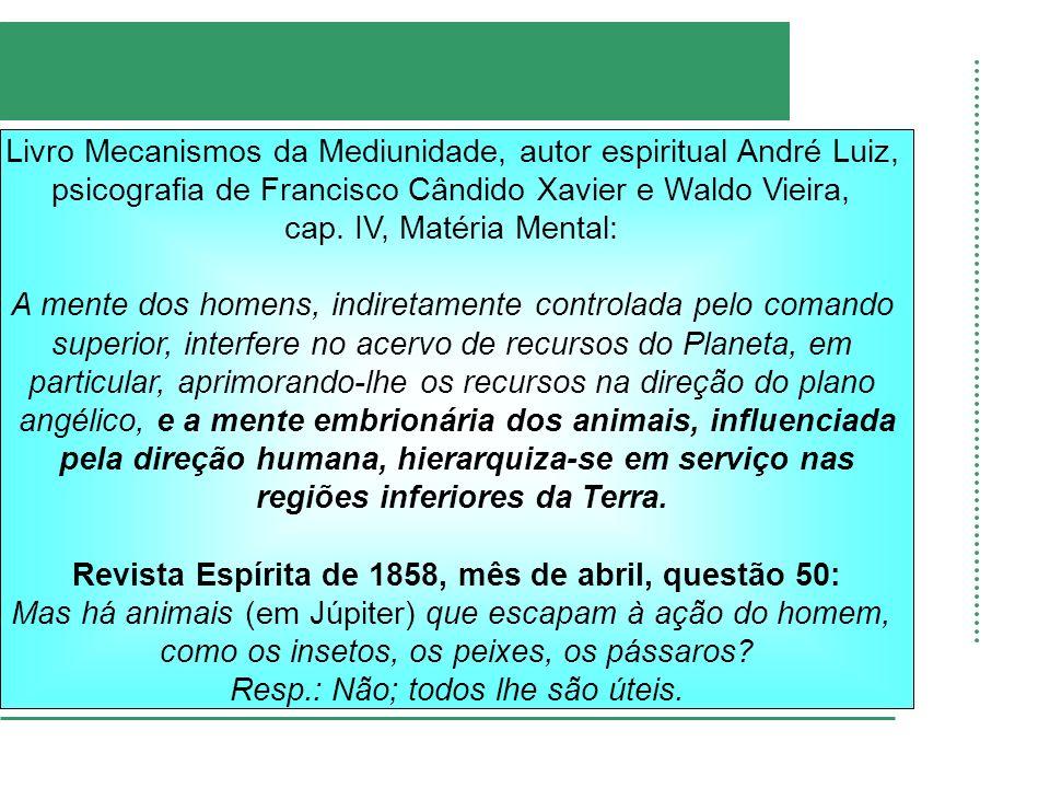 Livro Mecanismos da Mediunidade, autor espiritual André Luiz,