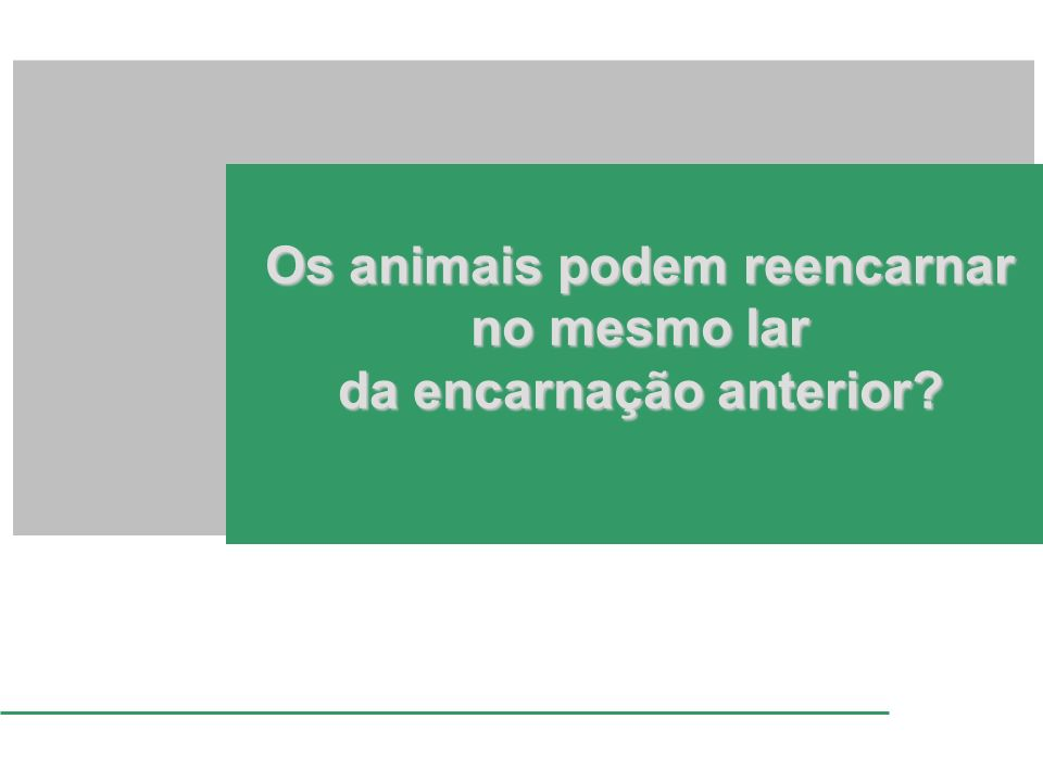 Os animais podem reencarnar no mesmo lar da encarnação anterior